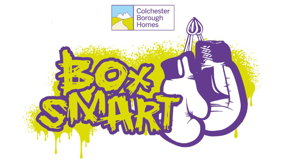 Box Smart Logo